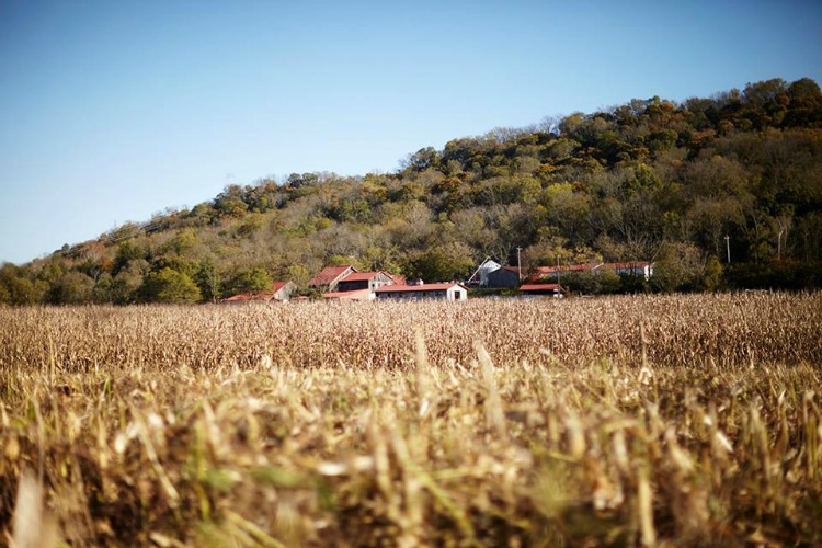 Carriage House Farm is improving its soil quality to grow nutritious food.