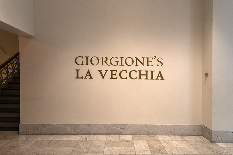 Gallerie dell'Accademia in Venice loaned the artwork to the museum.