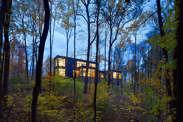 Jose Garcia's River Birch House
