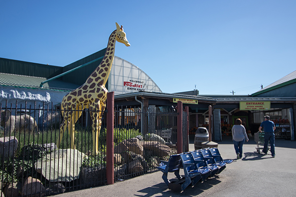 Wildlife statuary greets shoppers at Jungle Jim's International Market in Fairfield.