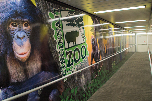 CVG relies on local partnerships with organizations like the Cincinnati Zoo to leave visitors with a lasting impression of the region.