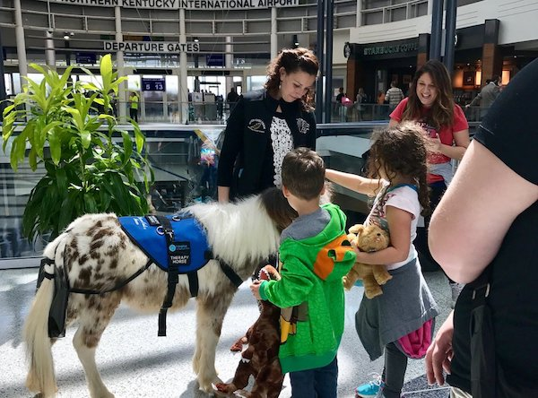 CVG received an award for its therapy horse program, a partnership with Seven Oaks Farm.