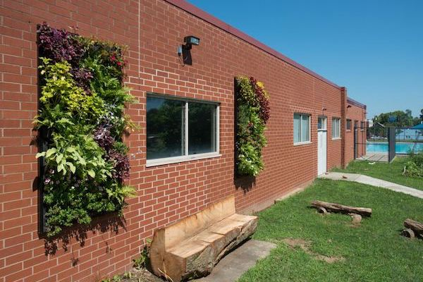 Living Walls Blooming In Two Central Neighborhoods