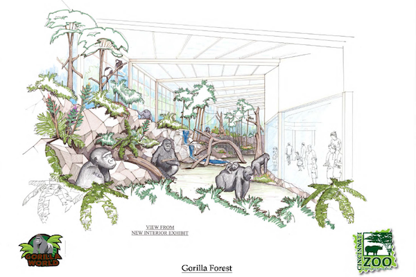 The new gorilla exhibit features a storm water catchment system and energy efficient initiatives.