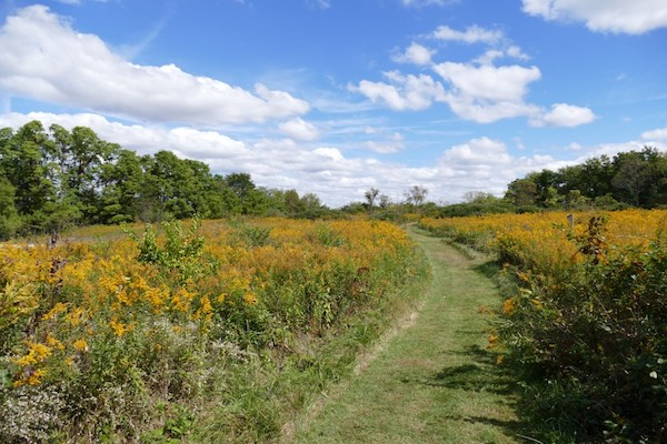 The Long Branch Farm Trails in Goshen Township.