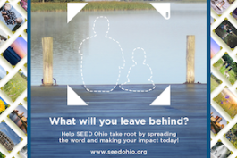 seed-facebook-post-social.png
