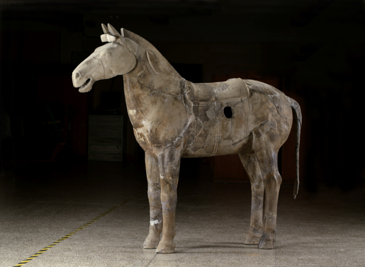 Cavalry Horse, Qin dynasty (221–206 BC), earthenware, Excavated from Pit 2, Qin Shihuang's Mausoleum, 1977, Emperor Qin Shihuang's Mausoleum Site Museum