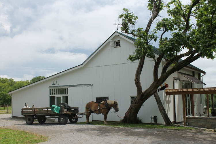 The Turner Farm Teaching Kitchen is housed in a renovated barn.