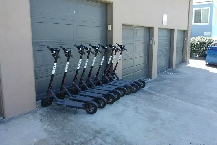 Bird scooters are becoming a popular mode of transportation in cities.