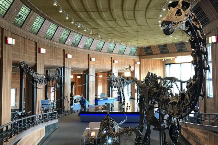 The grand entrance to the new Dinosaur Hall at the Cincinnati Museum Center.