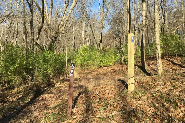 Posts clearly mark the two loops of the trail.