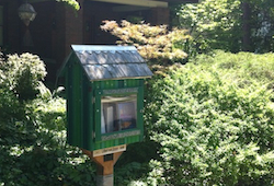 Little Free Library Clifton small