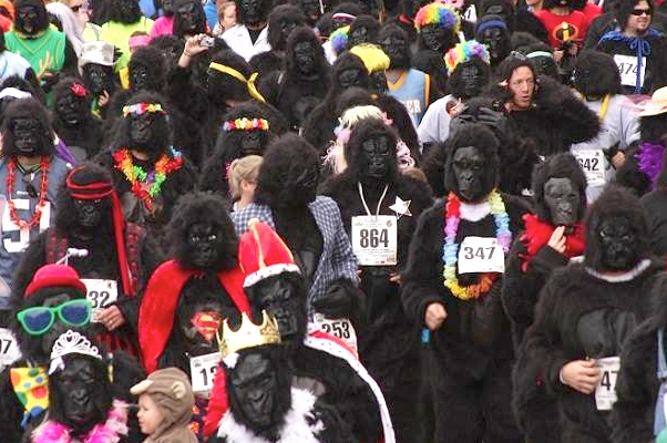 Prizes will be awarded for best costumes at Cincinnati Gorilla Run