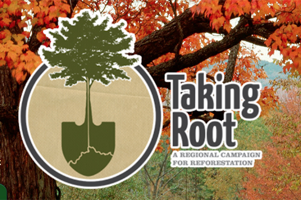 The Taking Root reforestation campaign pledges to plant two million trees in Cincinnati by 2020.